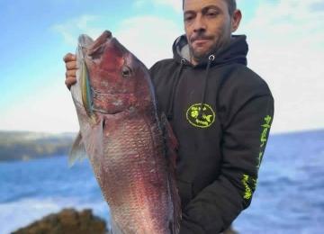 pescar Surfcasting Pargo